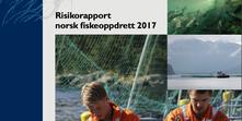 Skjermbilde 2017-07-17 10.41.50.png