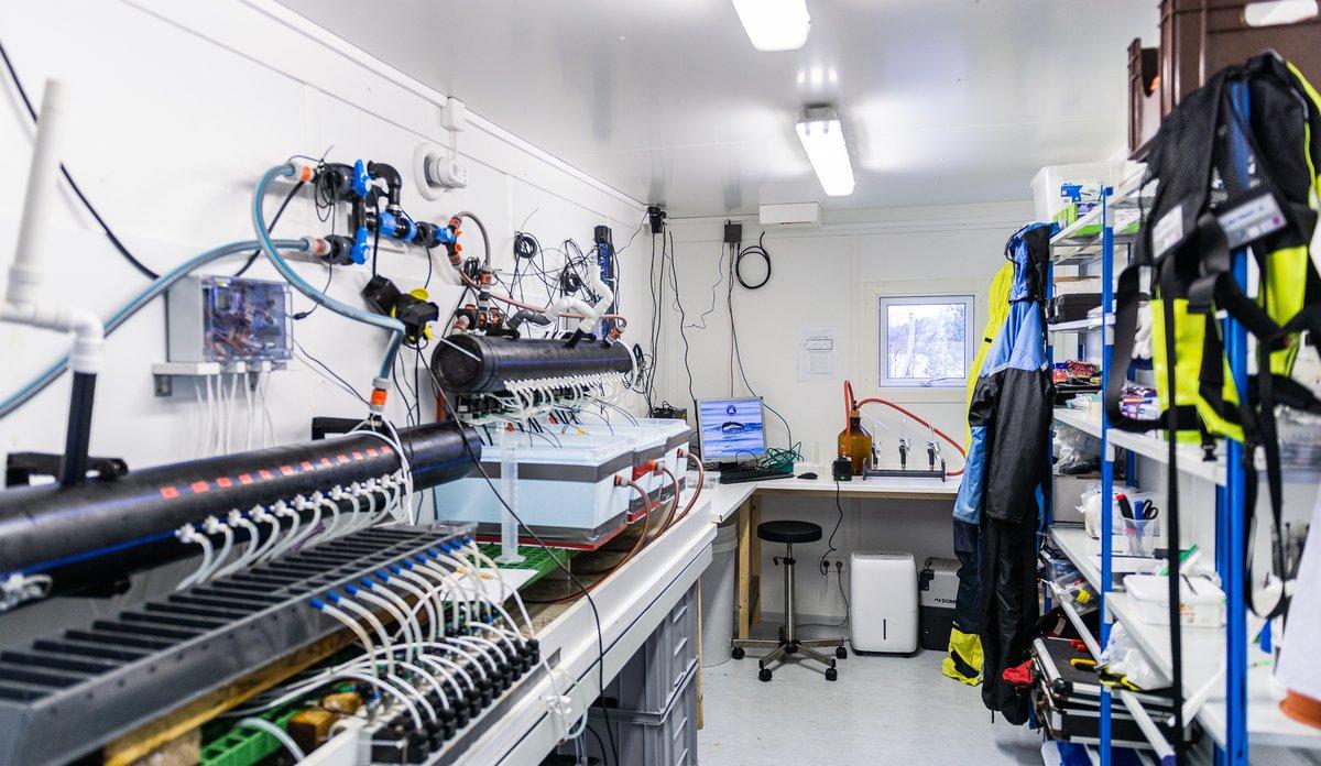 Det nye lavtrofiske laboratoriet i Austevoll.