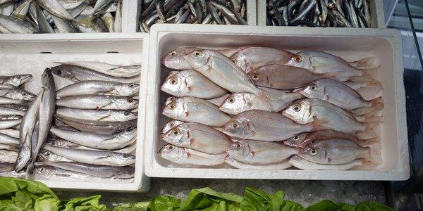 Fisk-i-fiskebutikk_helgeskodvin.jpg