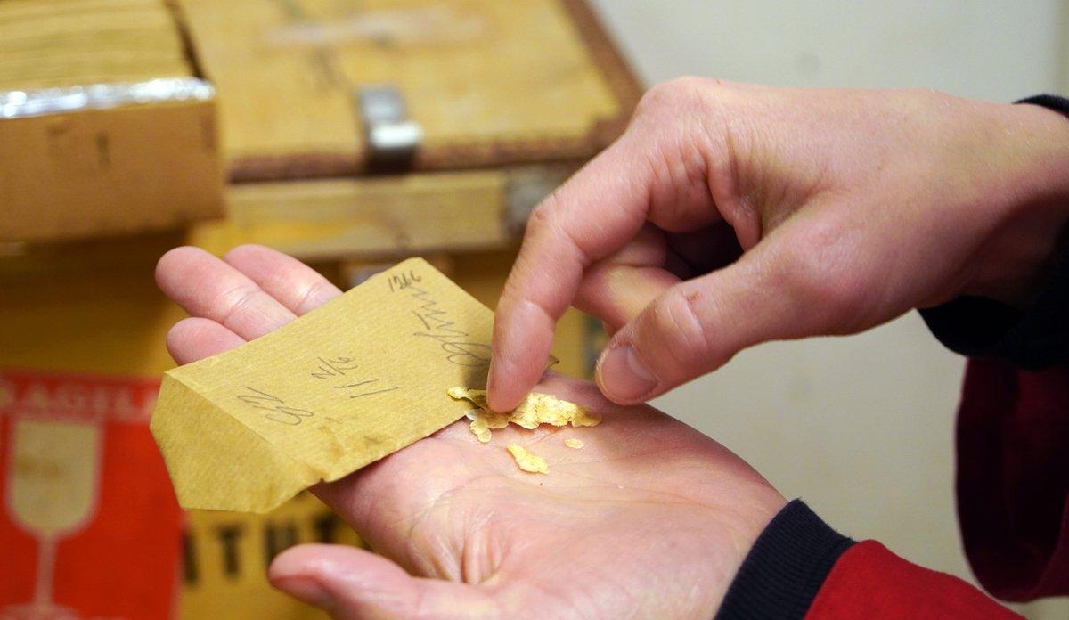 Ei hand med ein liten grå papirkonvolutt og tørka fiskeskjel som ser ut som små flak.