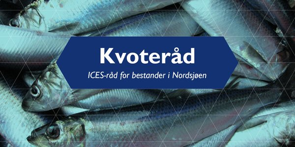 C:\Users\a22905\Creative Cloud Files\Web_kvoter\ICES-råd for bestander i Nordsjøen.jpg