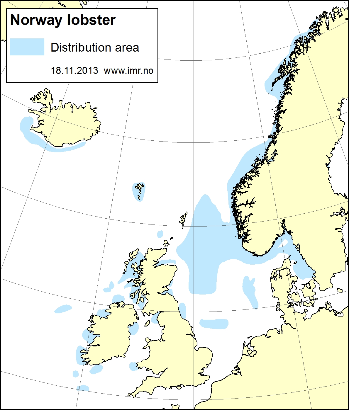 Distribution map norway lobster