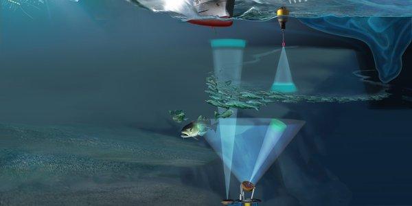 ny integrert teknologi til havobservasjon.jpg